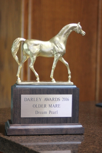 dream-pearl-darley-award-trophy_39698164482_o