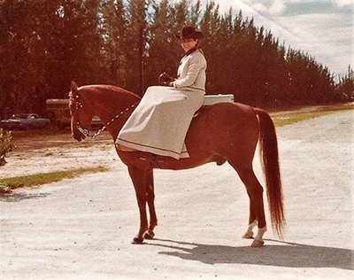normacorbin-shane-of-york-sidesaddle_24859911507_o